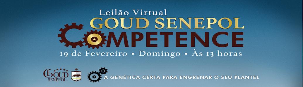 Leilão Virtual Goud Senepol Competence – Informações