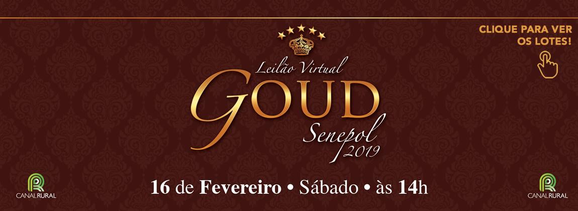 Leilão Goud 2019