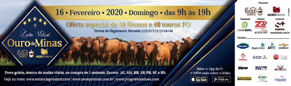 Leilão Ouro de Minas 2020